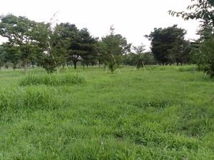 20070812_03